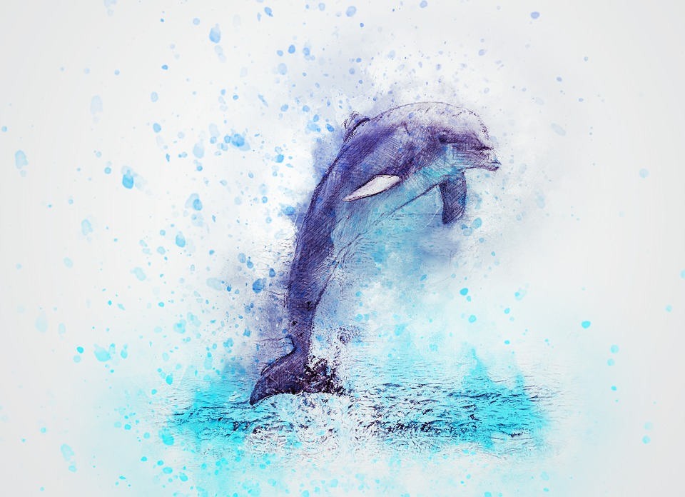 Cute Red Color Wallpaper Free Photo Vintage Art Abstract Jump Dolphin Animal Max