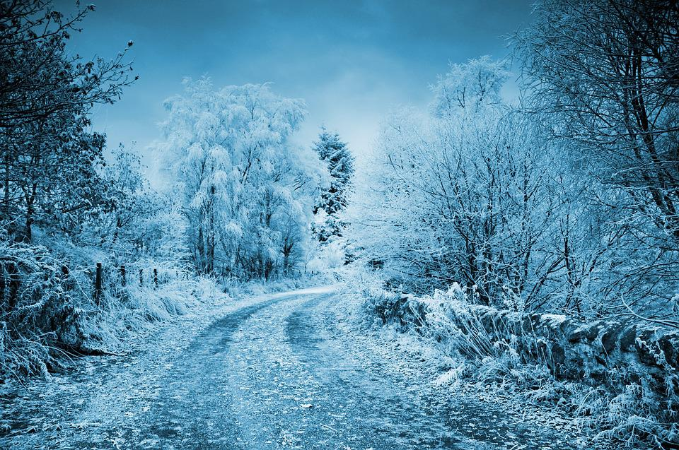 Black And Gray Wallpaper Free Photo Winter Frost Cold Frozen Background Snow Road