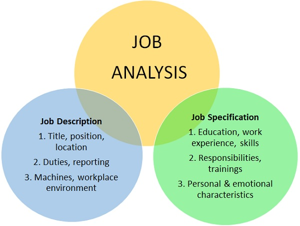 Job Analysis Definition Human Resources (HR) Dictionary MBA - job analysis
