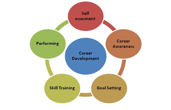 Career Development Stages Diagram - Wiring Diagram \u2022