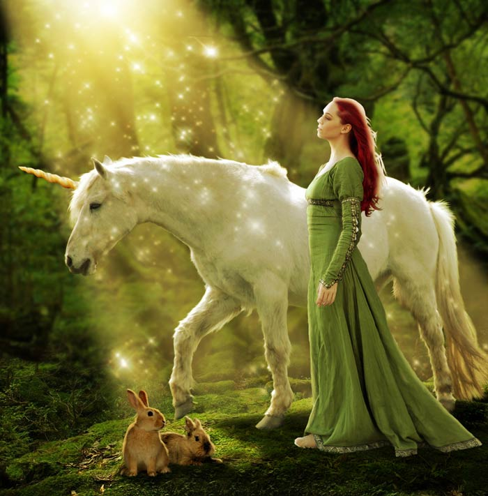 Cute Little Fairy Wallpapers Mb Photo Effects