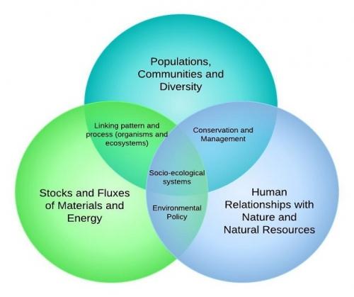 population community ecosystem venn diagram