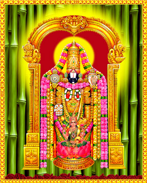 Sri Venkateswara Swamy Hd Wallpapers Balaji Venkateswara Swamy Digital Printing India