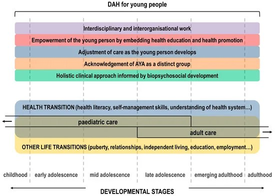 Healthcare Free Full-Text Helping Health Services to Meet the - vocational development stages