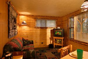 Acorn Cabin at Meadowbrook Resort & DellsPackages.com in Wisconsin Dells