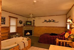 Hot Springs Cabin at Meadowbrook Resort & DellsPackages.com in Wisconsin Dells