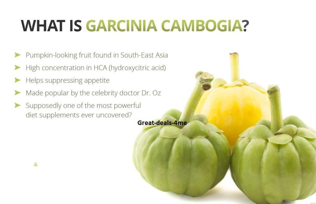 diet garcinia cambogia indonesia