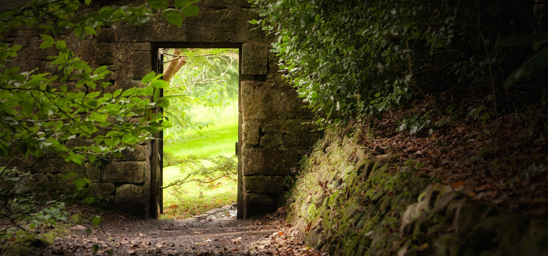 Make Your Own 3d Name Wallpaper Secret Garden Meditation For Clarity Meditainment