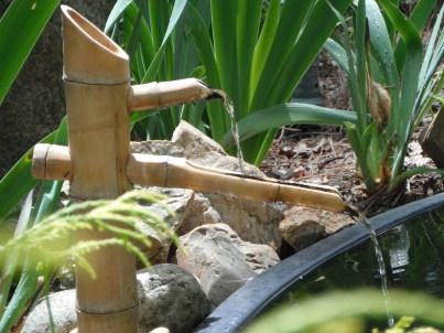 Ganesha's Pond