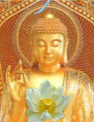 angelica-buddha