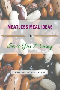 Meatless Meal Ideas to Save You Money: Not sure you can convince your family to go meatless? These tips and recipes are sure to be hits!