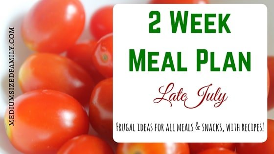 2 Week Meal Plan for Late July