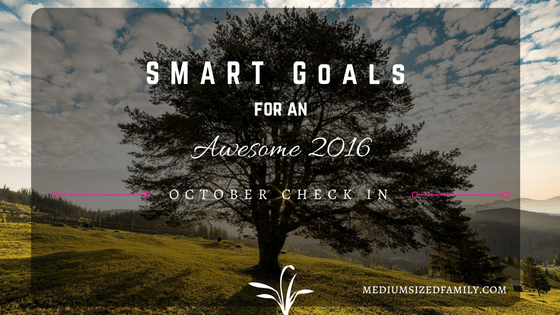 My S.M.A.R.T Yearly Goals – October Check In