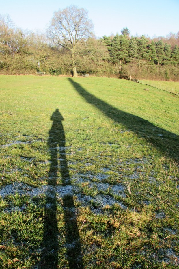 me-and-shadow