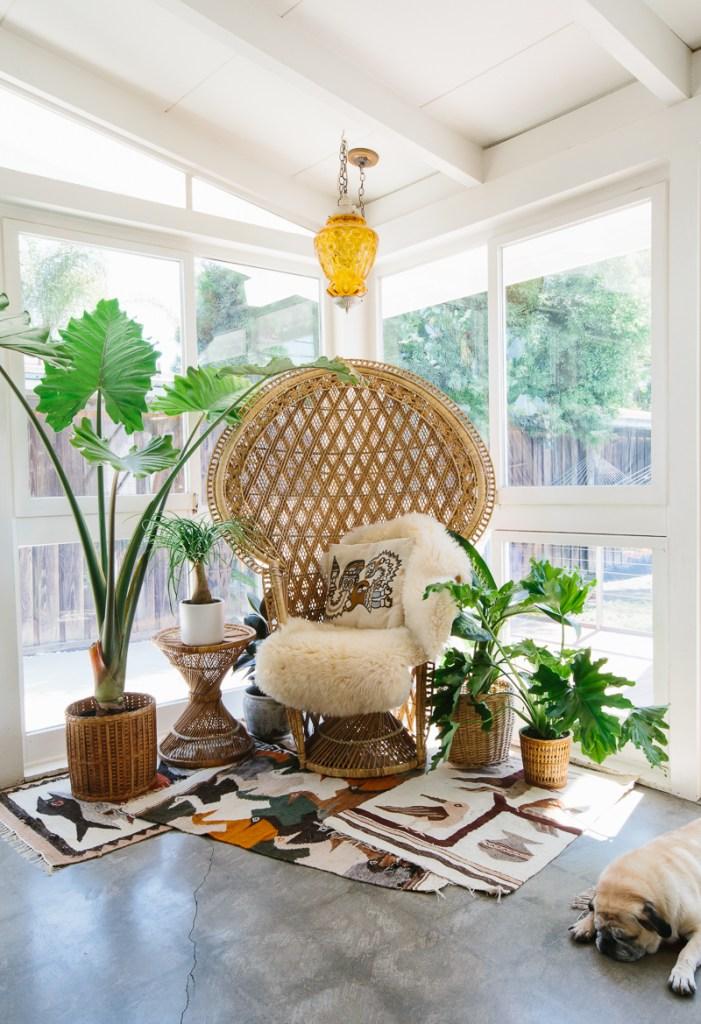 peacock-chair-sun-room