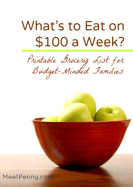 $100 Grocery List for a Week - Meet Penny