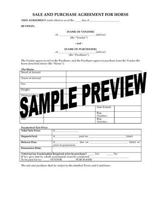 Horse Sales Contracts  NodeCvresumePaasproviderCom