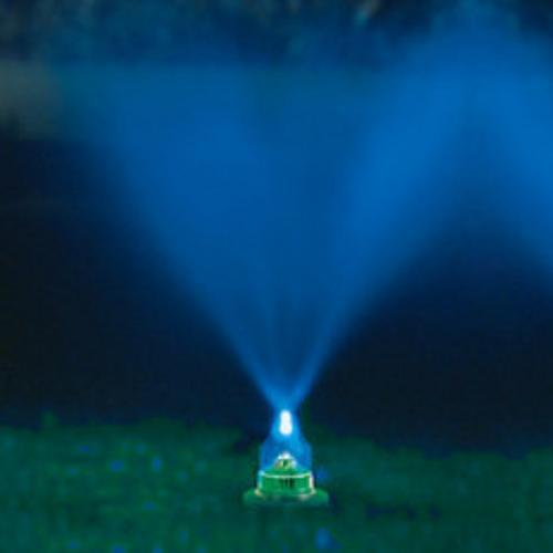 Summer Fun With the Water and Light Lawn Show   79952