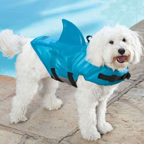 MEGATech Showcase: Summertime Beat the Heat Gear   shark dog life jacket 500x500