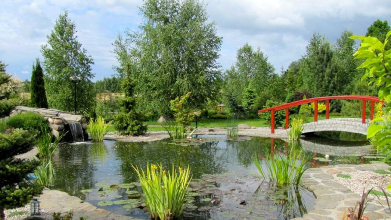 Comment Créer un Jardin Japonais ou un Jardin Zen ? Tous Nos Conseils - Jardin Japonais Chez Soi