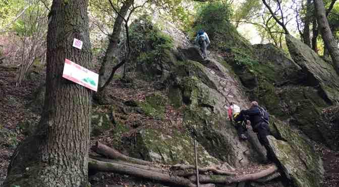 Bopparder Klettersteig mit der Freizeitagentur Having Fun