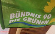 Fahne Grüne