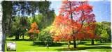 I Parchi di Melbourne