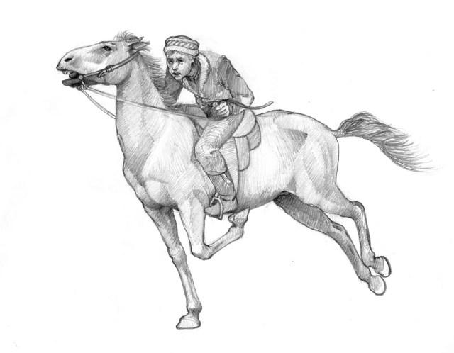 afghankidonhorse