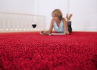 What to Look Into When Purchasing a Carpet for Your Home ...