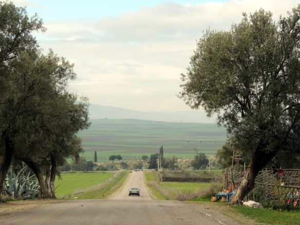 Approaching the Roman ruins of Volibilis.