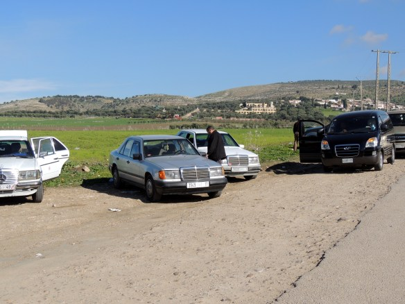 Taxi's and limousines wait outside of the grounds at Volubilis while groups and individuals visit the ruins.