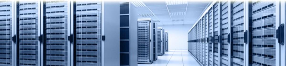 cv management de transition informatique
