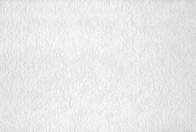 Plaster Wallpaper Roll at Menards®