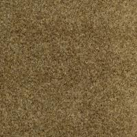 Marine Carpet Menards | Taraba Home Review