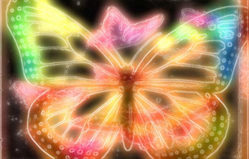 Butterfly Glowing © lynette sheppard