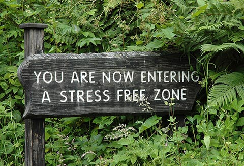 Simple Tips To Improve Your Health by Reducing Stress MentalHealthorg