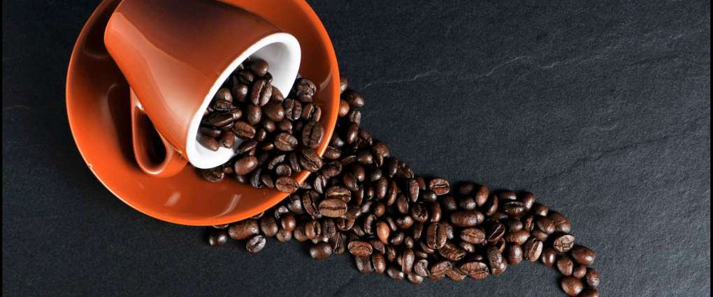 beans-coffee-cup-2059