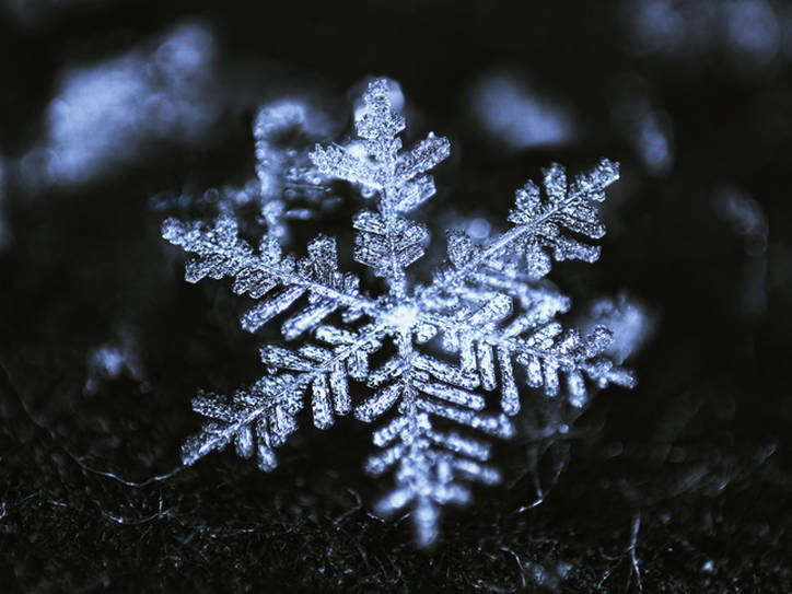 A New Meaning of the Word \u0027Snowflake\u0027 Merriam-Webster