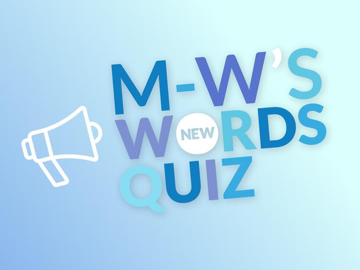 New Words 2018 Quiz Weekly Challenge