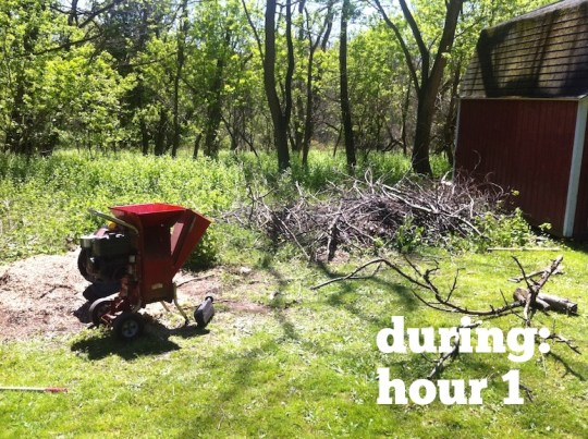 Wood chipping: An exhaustive first hour.