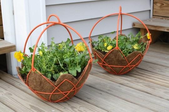 Twinsie planters; 18 pansies total.