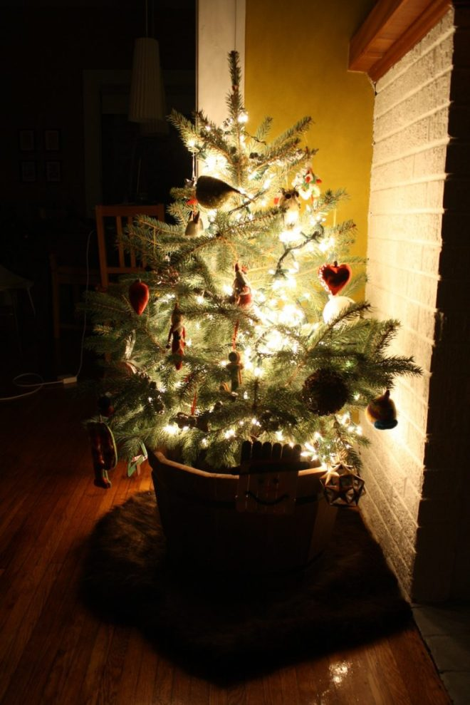 The great mini-tree of 2011.