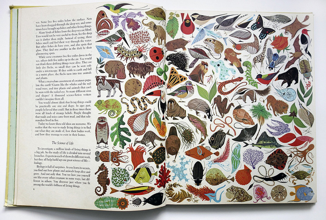 Charley Harper's illustrated Golden Books