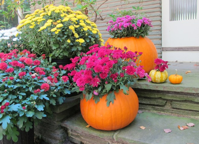 Pretty pumpkin planters! A DIY tutorial on Made + Remade.