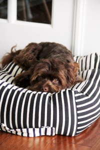 How to Make a Dog Bed - The Sewing Rabbit