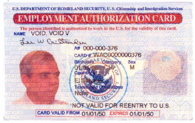 Sample Employment Authorization Document Messing Tucson - sample employment authorization form