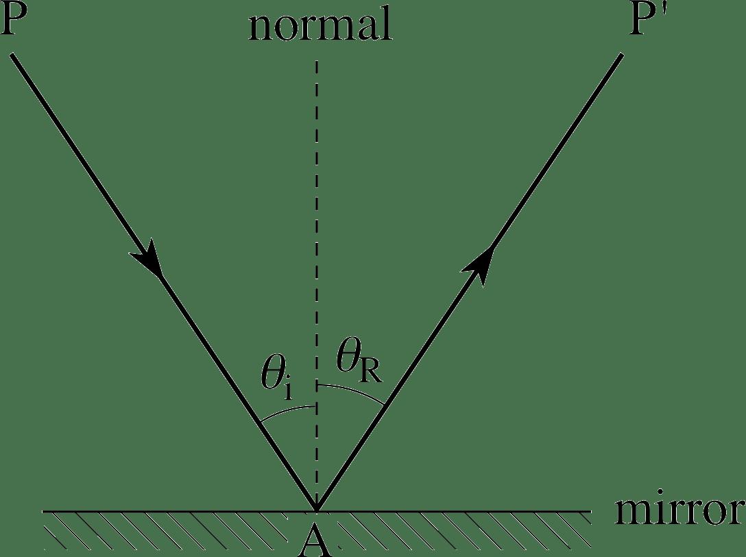 the eye diagram ks3