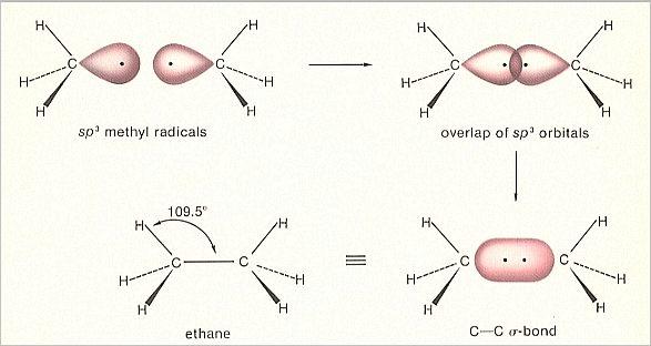 The Chemical Bond - carbon bonds