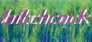 logo2 300x138 Bitchcock