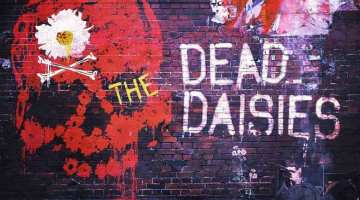 deaddaisies16